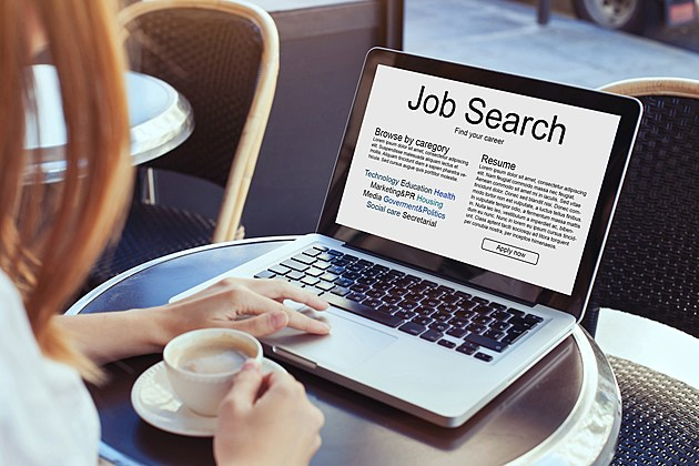 The advantages of a web-based Job Search